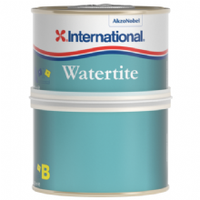 International Watertite Quick Drying Two-Pack Epoxy Filler - 250ml